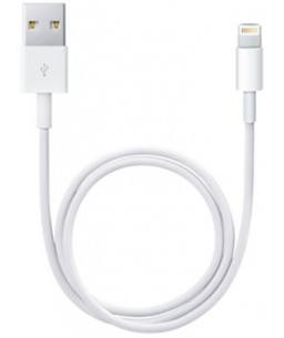 Apple Lightning to USB...